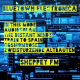 Bluetown Electronica show 25.01.15