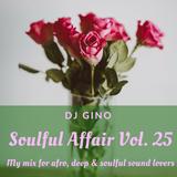 Soulful Affair Vol. 25
