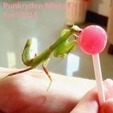 Punkryden Mixtape :  April 2014