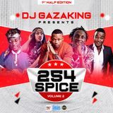254 SPICE MIXTAPE VOL_2(1st Half Edition) - DJ GAZAKING THA ILLEST (AUDIO VERSION)