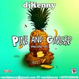 DJ KENNY PINE AND GINGER DANCEHALL MIX VOL2. DEC 2017