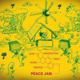 taisouegao dj mix at Peace jam (junyalion Didgeridoo)
