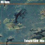 Totoro Sun