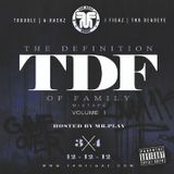 T.D.F mixtape vol 1 The Definition of Family