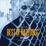 BEST OF NATE DOGG -ORENARI BEST MIX vol.1-