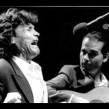 Flamenco: Del Cante Jondo hasta Rosalía, curado por María Fernández Pello