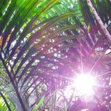 L'instant mix - Soft Tropical Sound
