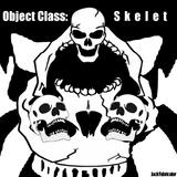 Object Class: Skelet