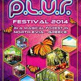 PLUR festival - Dorito  dj set
