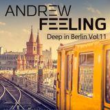 Andrew Feeling - deep in Berlin vol.11