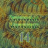 Psychedelic Wonderfuzz #14