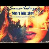 `Summer Feelings` Short Mix 2014