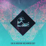 Ocean Roulette Live @ Jackson Tree Winter 2017