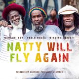 Natty Will Fly Again Extended Discomixes