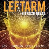 Leftarm - Bitesize Beats 005: Unknown Intelligence