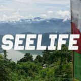 Seelife 001