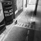 Black Bean Hotel