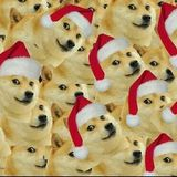 Hectic! 3 - Wow, such jolly!
