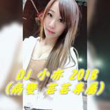 DJ 小亦 2018 (病變 & 非酋 & 走心 & 芸芸專屬)