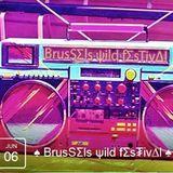 SOLID vs GREEN ( DJ SMIMOOZ & DJ GRAZZHOPPA ) @ ♠ ΒrusSΣls ψild fΣs₮iv∆l ♠