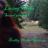 Dubby Herbs Live Mixtape by selecta Zugree