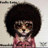 Funky Gato Vol.2.432