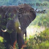 Anton Bykov - Ele Phant MFM Station 27.08.2013