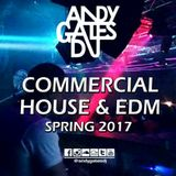 'Commercial House & EDM' (Spring 2017) Mix