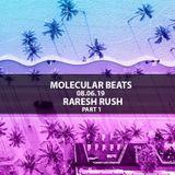 Raresh Rush - Molecular Beats at Beams 08.06.19 part 1