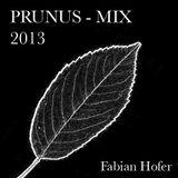 PRUNUS - MIX 2013