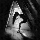 In The Darkroom SET