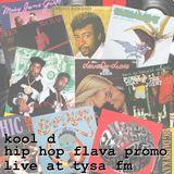 hip hop flava promo ( live @ tysa fm radio )