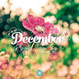 Tháng 12 khi yêu thương trở về