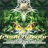 Freak Bazaar @ Volks. Basement set. 10/01/14