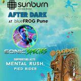 PIED RIDER (DJ Set) @ Sunburn After Dark - Blue Frog, Pune. (29/12/2016)
