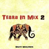 Tebra In Mix 2