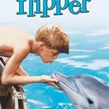 240519 Flippercast (71) (Ice Radio) - Met de beste singles die niet in het Hitdossier staan!