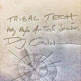 DJ Gubimann- TRIBAL TECH- Polyrhythm Afrotech Sessions (12:00min Preview)