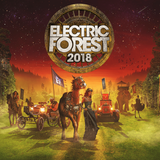 Testpilot (deadmau5) - Live @ Electric Forest Festival 2018