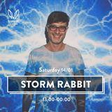 Rabbits in the Sand - Storm Edition - The Block Tel-Aviv 2017 - Ilya