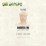 Andrea Mi - Florence Mixtape // Easy Living /// (vinyl only)