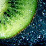 Aqua - Elixir Of Life