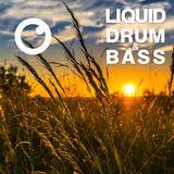 Liquid Drum & Bass Sessions #04 - Dreazz [May 2019]