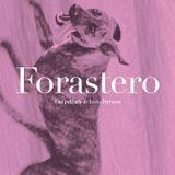 Entrevista con Lucía Ferreyra sobre 'Forastero'