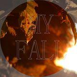 My Fall 2013