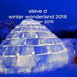 Steve D - Winter Wonderland 2016 (December 2016)
