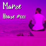 House #001