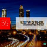Prototype of Nu-Soul 59