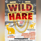 Wild Hare IV : Live at the Arcade