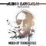 Teknonotice - Audio Eargasm Tribute Mix